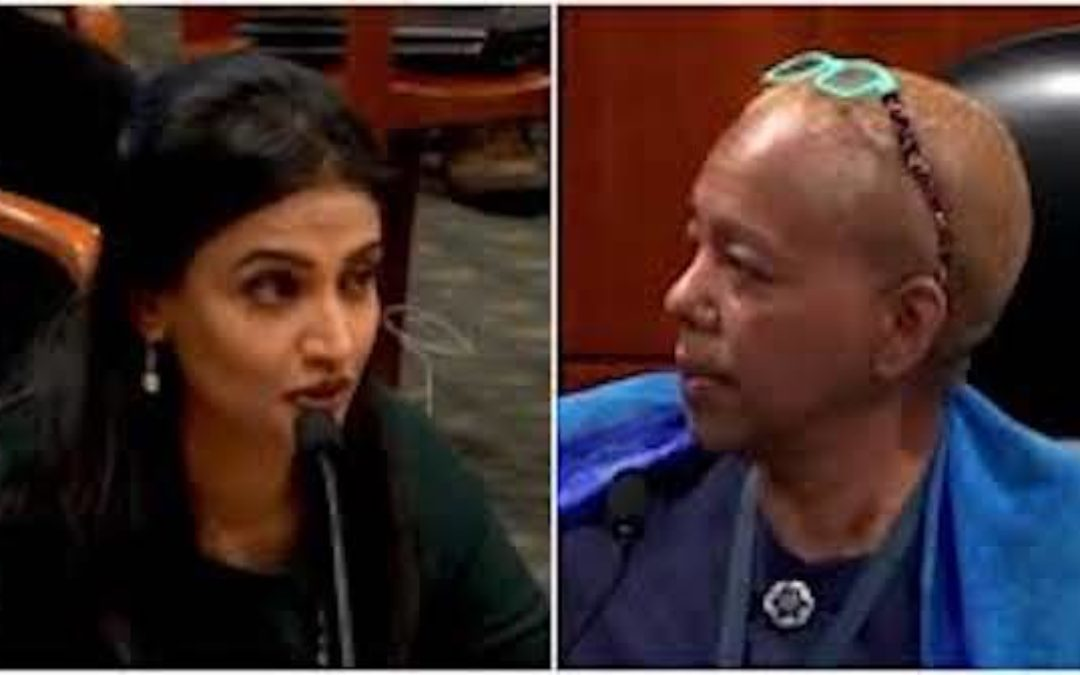 Michigan Hearing Witnesses Hammer Unhinged Democrats Who Were Accusing Them Of Lying  (Video)
