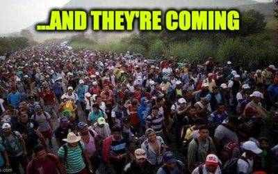 Ninth Circuit Judges Reopen Borders for Flood of Illegals