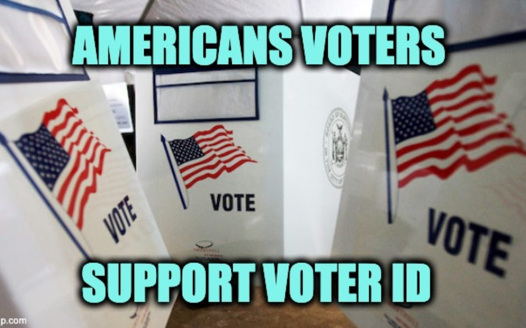 75% Of Likely Voters (Including Most Dems) Support Voter ID Laws