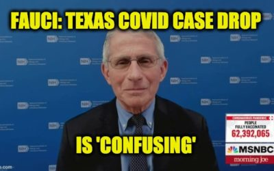Fauci Claims The Fall In COVID Cases Since Texas Relaxed Restrictions Is 'Confusing'