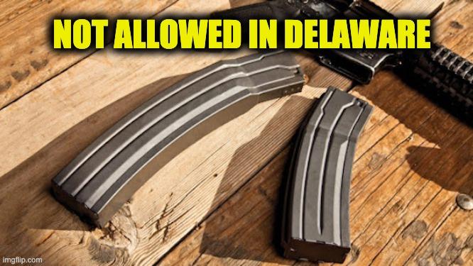 Delaware large capacity magazines