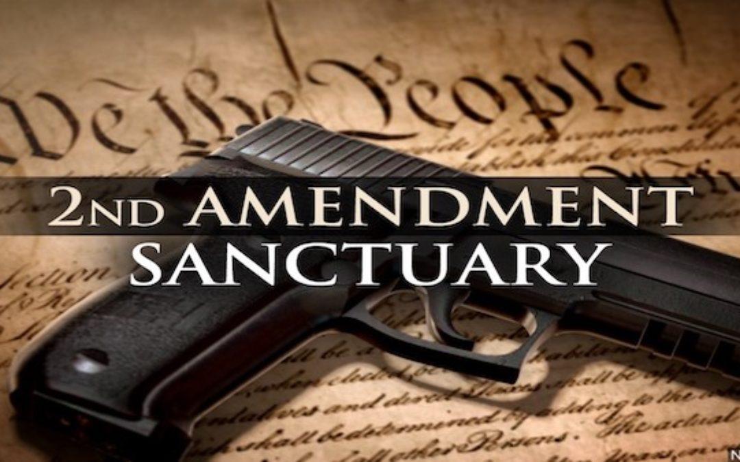 Gov Pete Ricketts Declares Nebraska A 2nd Amendment Sanctuary State