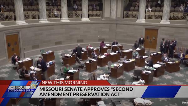 second amendment preservation act
