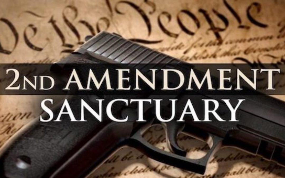 Two Thirds of U.S. Counties Have Passed Second Amendment Sanctuary Laws