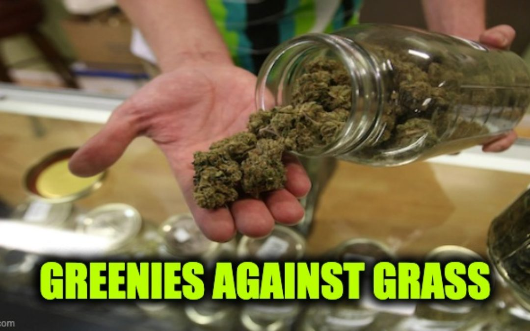 Greenies Against Grass: Climate Change Believers Now Attacking Legal Marijuana