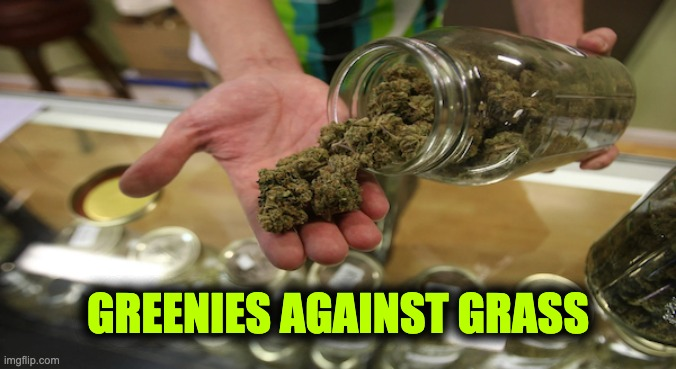 greenies against grass