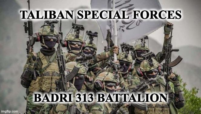 Badri 313