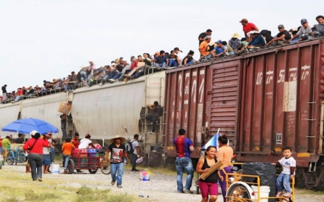 Is The Red Cross Promoting Illegal Immigration?