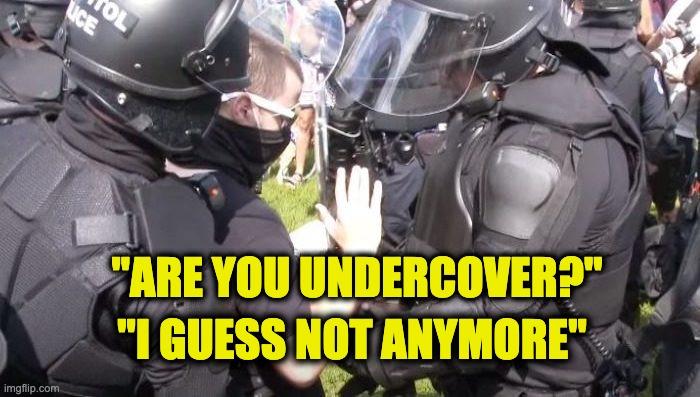 J6 rally undercover cop