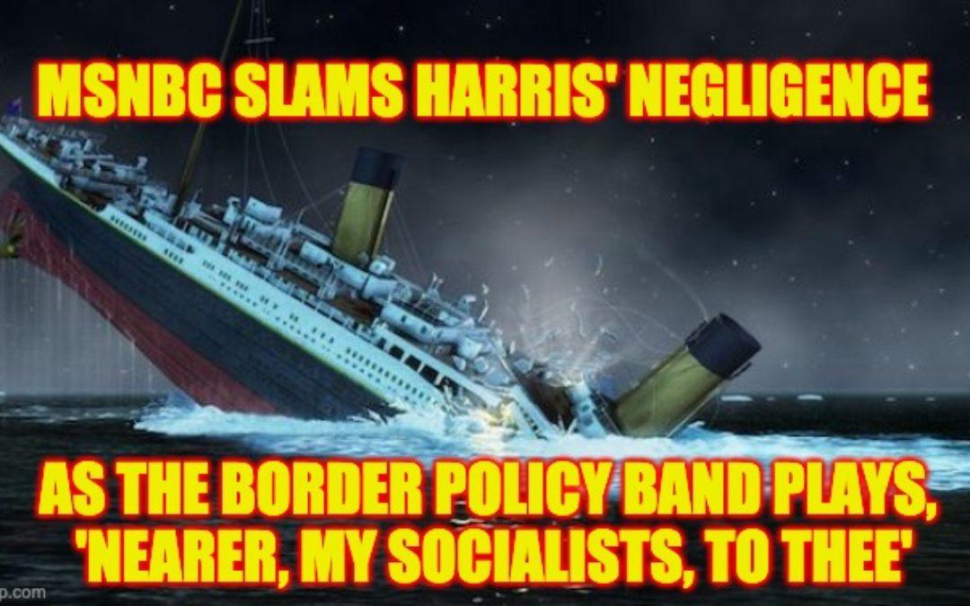 MSNBC Anchor Slams Kamala Harris' Border Negligence